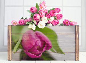 bloembak 1