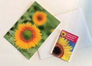 zonnebloem pakketje als hart onder de riem